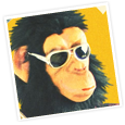 Monkey Custom Websites